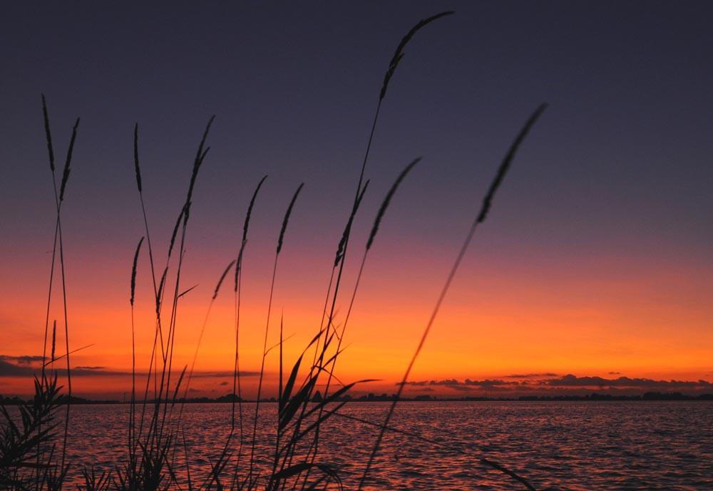Le site web de guillaume cannat - Coucher du soleil montpellier ...